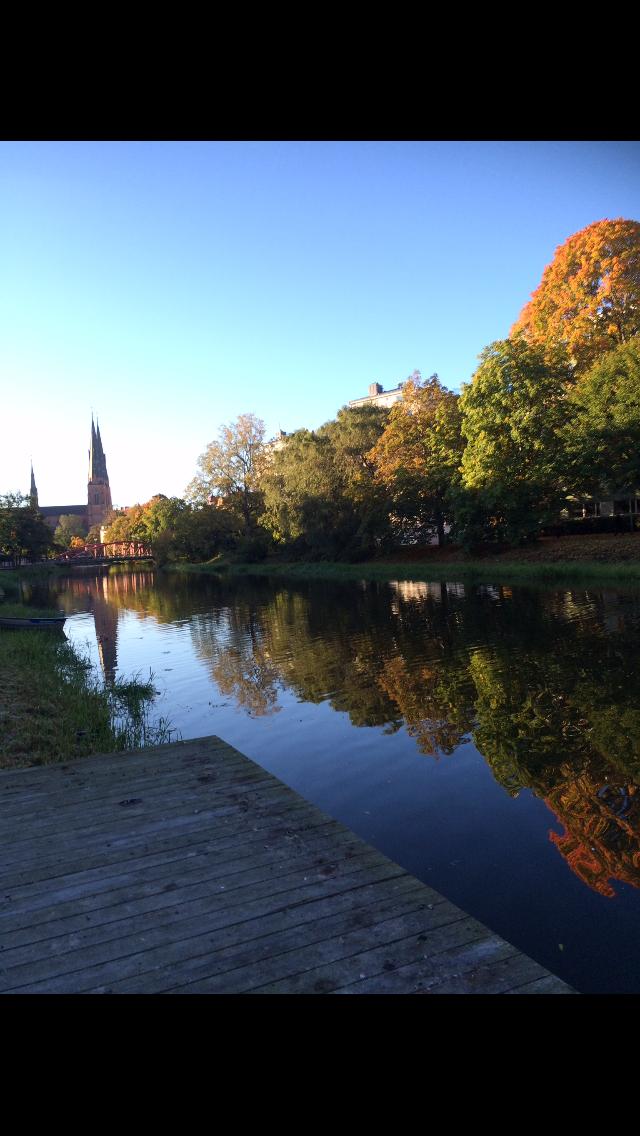 7 enkla knep att ta till när det mörknar, morgonpromenad vid Fyrisån i Uppsala.
